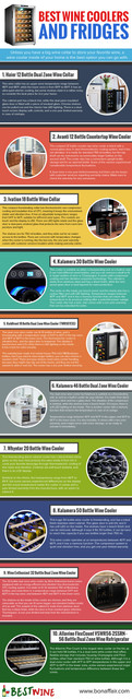 infographic-best-wine-coolers-1