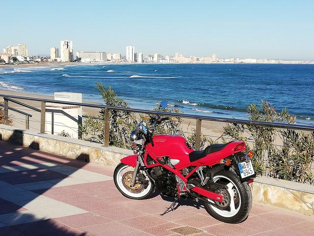 Bandit roja en Los Alcázares, la zona del Mar Menor - Página 2 IMG-20190111-110128