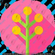 006-flowers