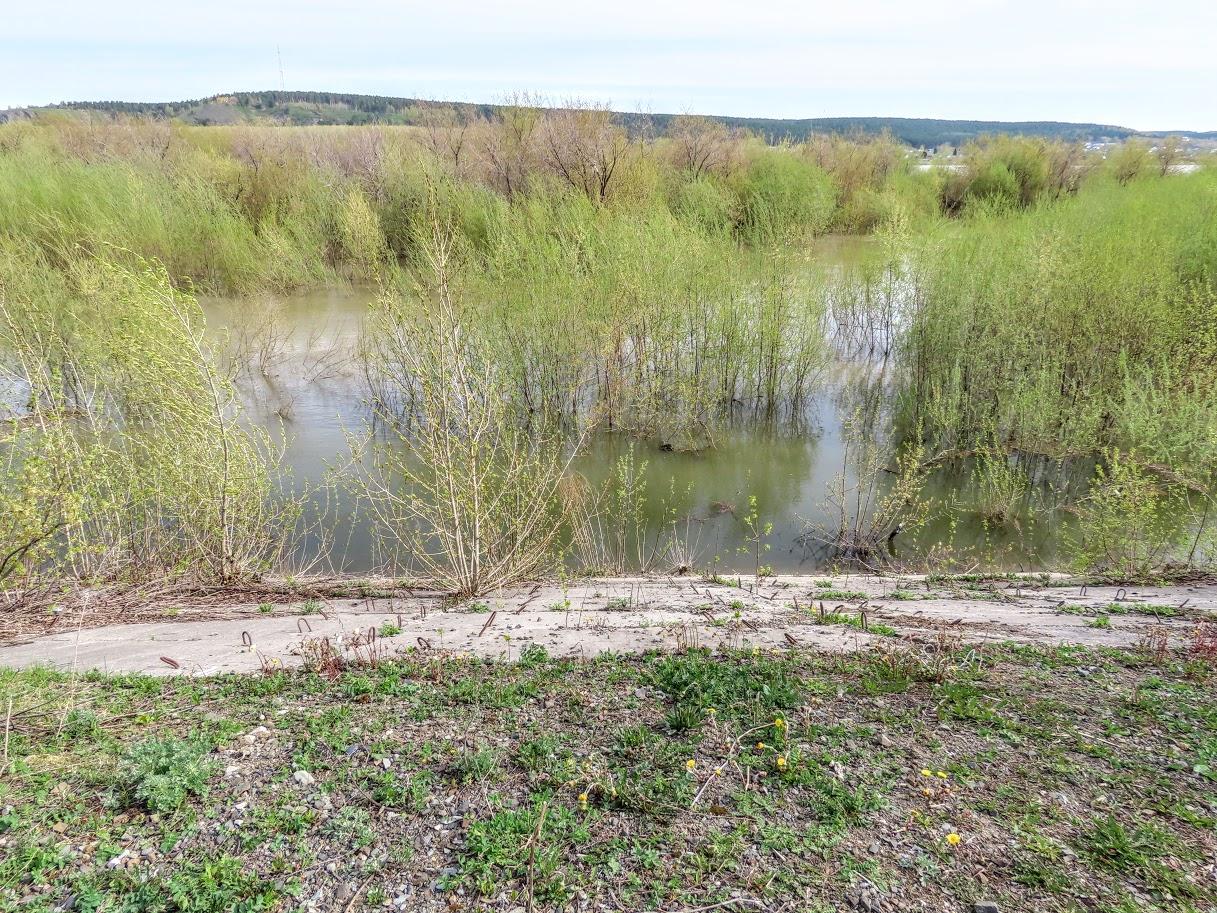 Уровень воды в Томи снова повысился IMG-7760