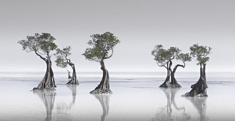 Лучшее с конкурса панорамной фотографии Epson International Pano 2019