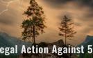 5-G-action-min-1.jpg