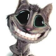 [Bild: big-cat-smile.jpg]