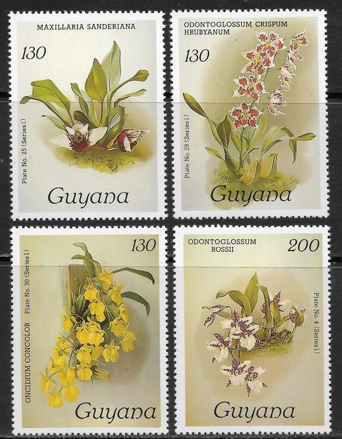 O Guyana 1389