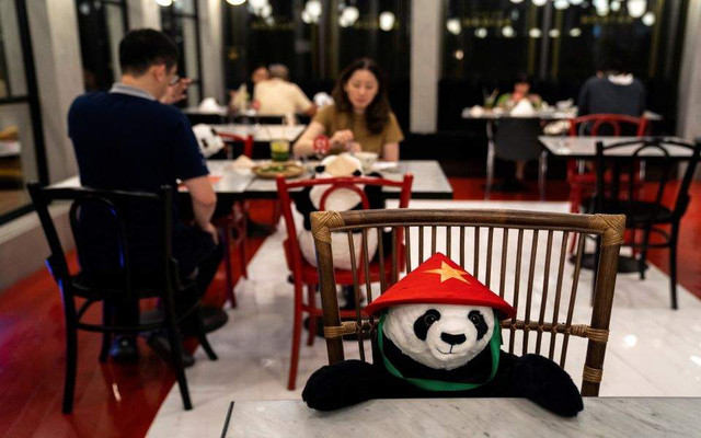 panda-thumb-large