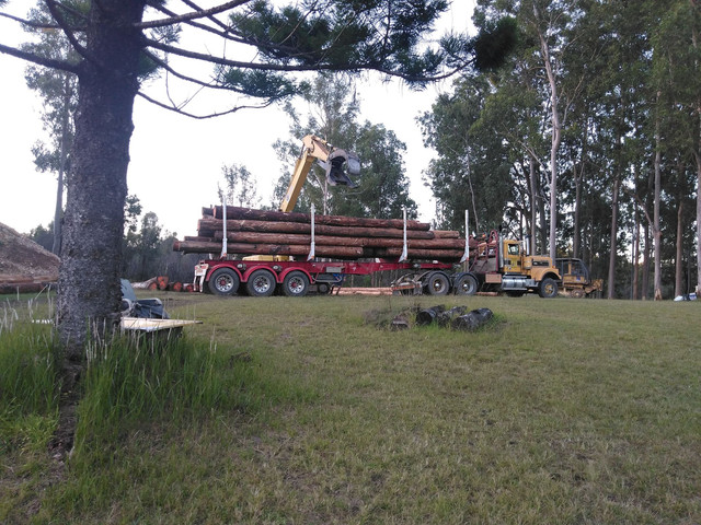 Timber-First-Load