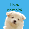 dogbadge.png