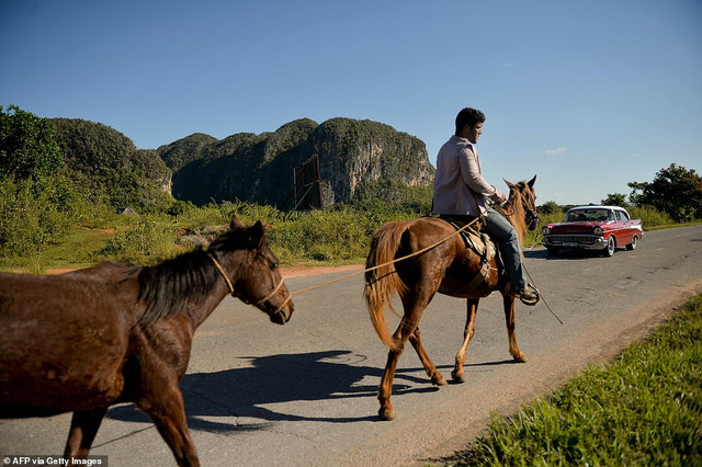 22160930-7785767-A-car-crosses-paths-with-a-man-riding-his-horse-while-holding-an-a-45-1576170216510.jpg