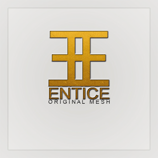 NEW-ENTICE-LOGO-ORIGINAL-MESH-512