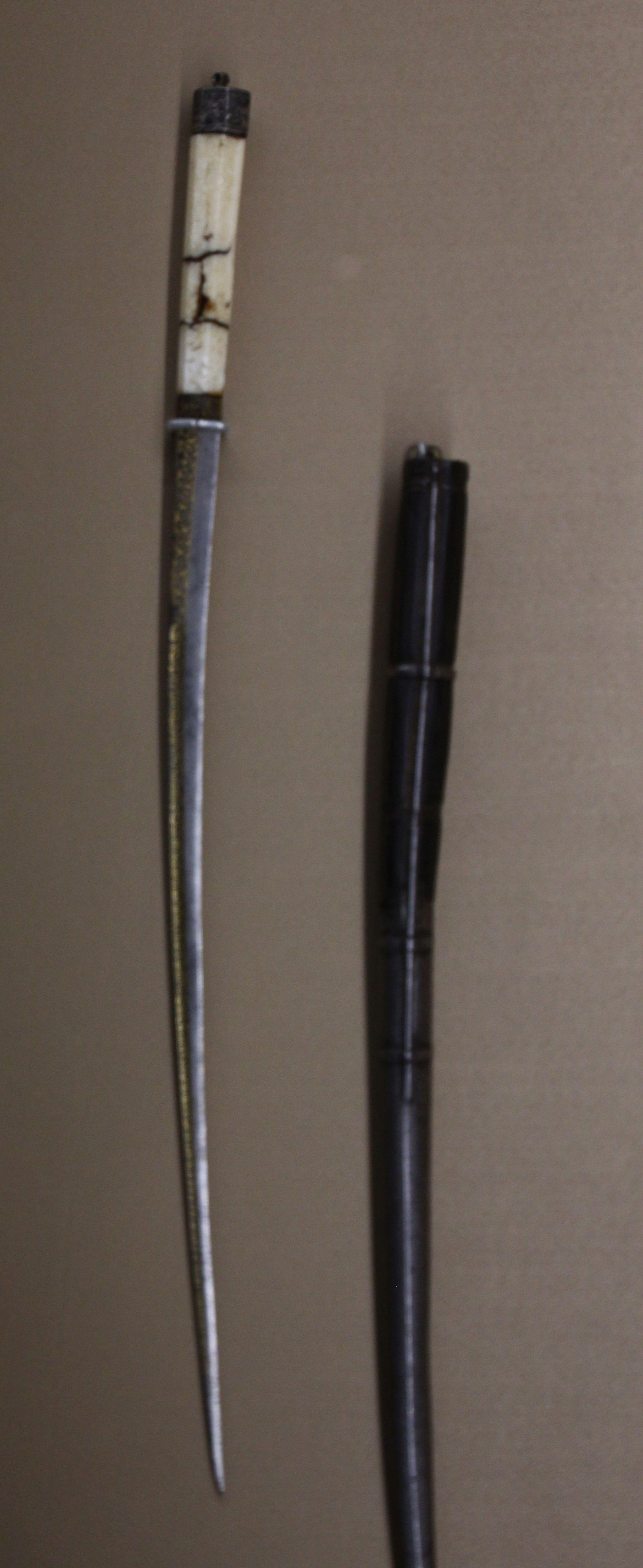 IMG-5551