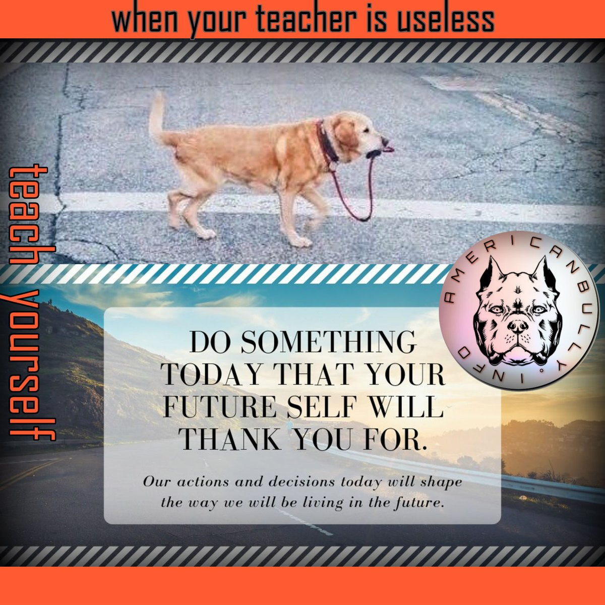 When your teacher is useless, teach yourself