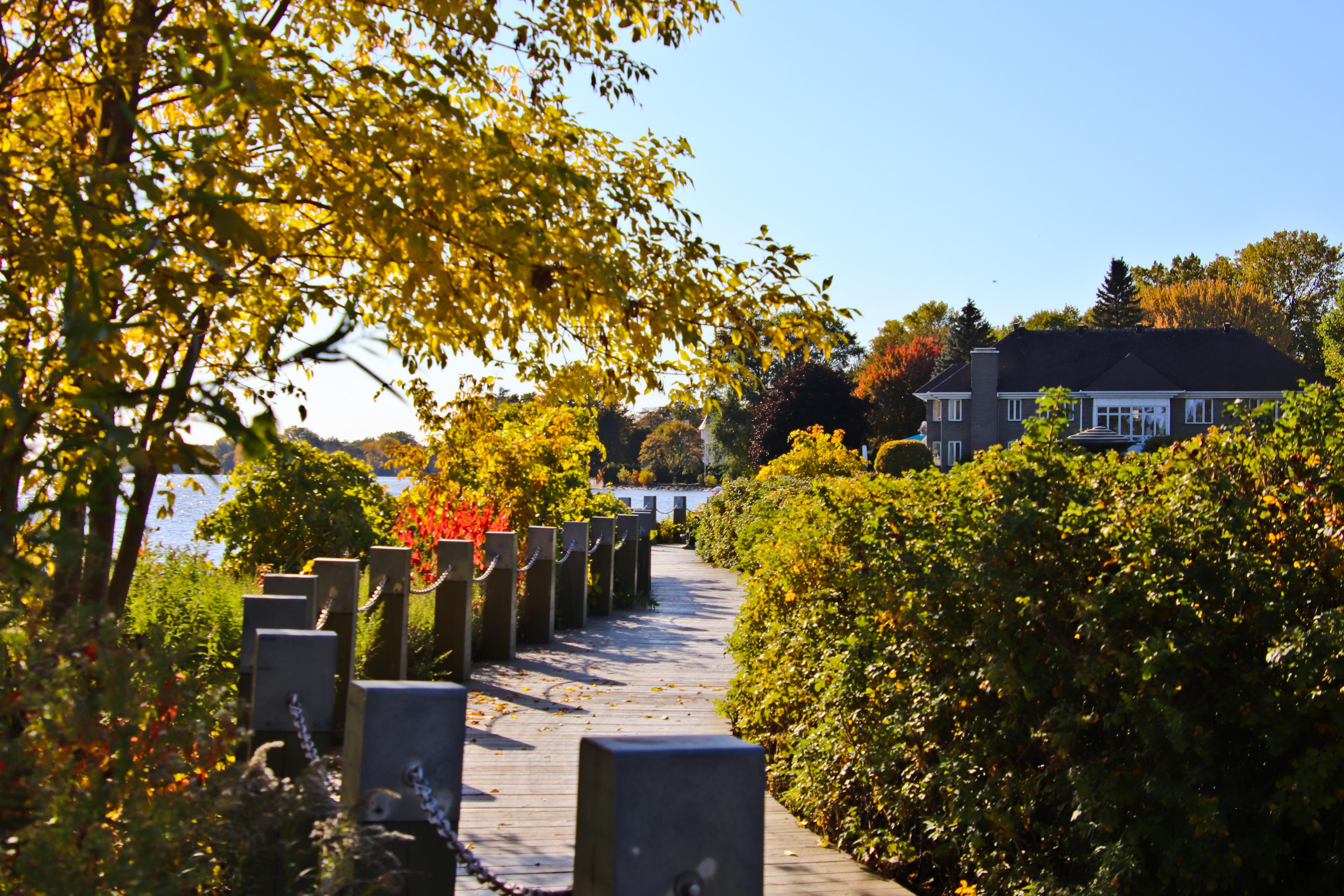 11-octobre-2019-promenade-20