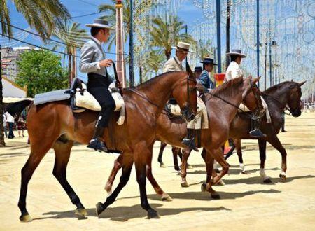 Feria Caballo Jerez