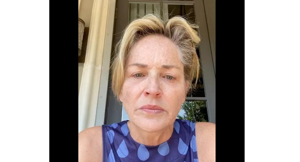 Covid-19: anche Sharon Stone si scaglia contro Trump (Video Instagram).