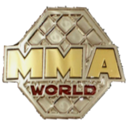 MMA-3.png