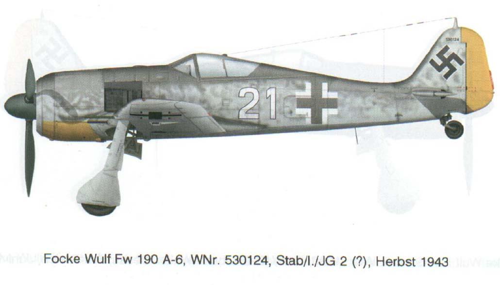 fw190-a6.jpg