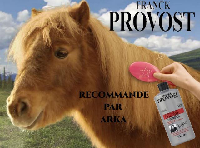 https://i.ibb.co/wMhZpGj/brosser-un-poney-derriere-son-ordi-grace-canal-163390.jpg