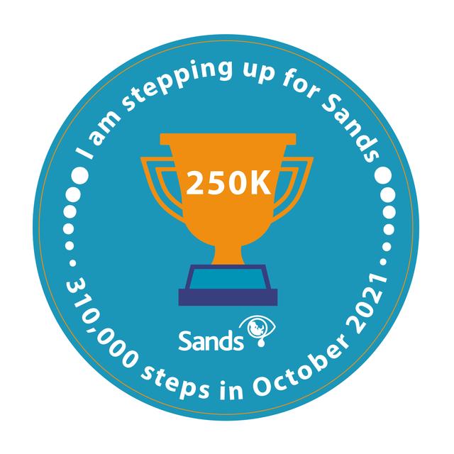 310k-Steps-Achievement-Badges-250