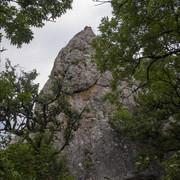 OLYMPUS-DIGITAL-CAMERA