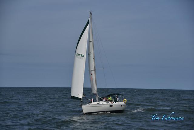 SARW-Shore-2021-04-23-703.jpg