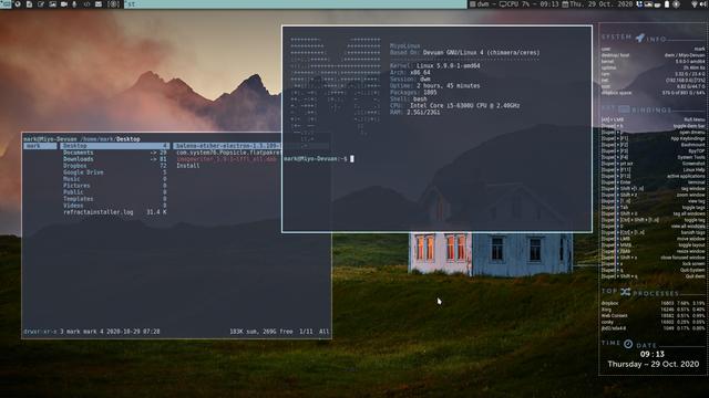 dwm-Miyo-Linux-Devuan-Ceres-with-ranger-conky