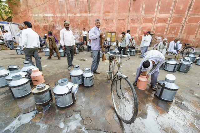 Milk-Market-at-Jaipur