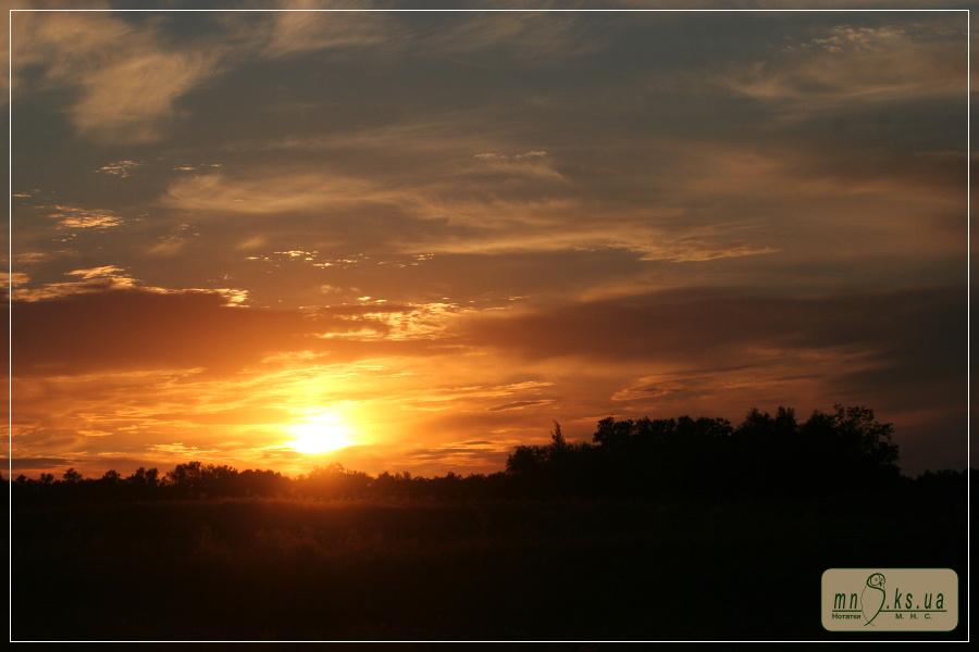 Серпневий вечір на Івано-Рибальчанській ділянці Чорноморського біосферного заповідника