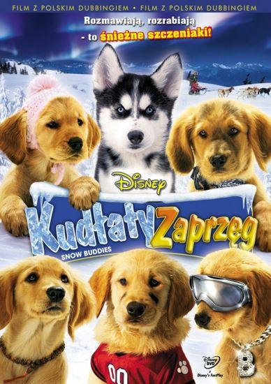 Kudłaty zaprzęg / Snow Buddies (2008) PLDUB.HDTV.XviD-GR4PE   Dubbing PL