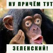 Вирішення безпекових питань на Донбасі має стояти на першому місці. Лише після цього можна переходити до політичного блоку, - Кучма - Цензор.НЕТ 8474