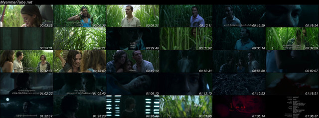 In-The-Tall-Grass-2019-Myanmar-Tube