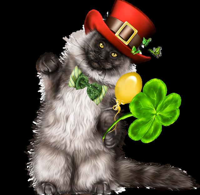 Leprechaun-Cat-With-Beer-44.png