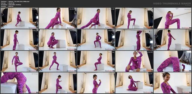 Johanna-The-Pink-Zebra-1080p-mp4
