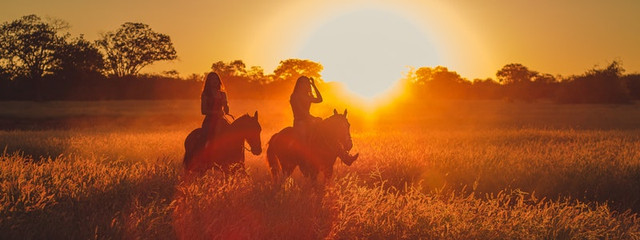 silhouette-photo-of-two-persons-riding-horses-2714627-1