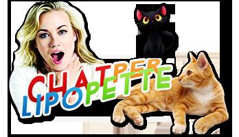 Evénement #102 : Chatperlipopette ! [Fe]  Chatchatheader
