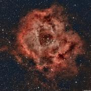rosette-nebula.png