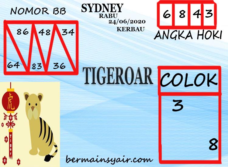 TIGEROAR-SDY