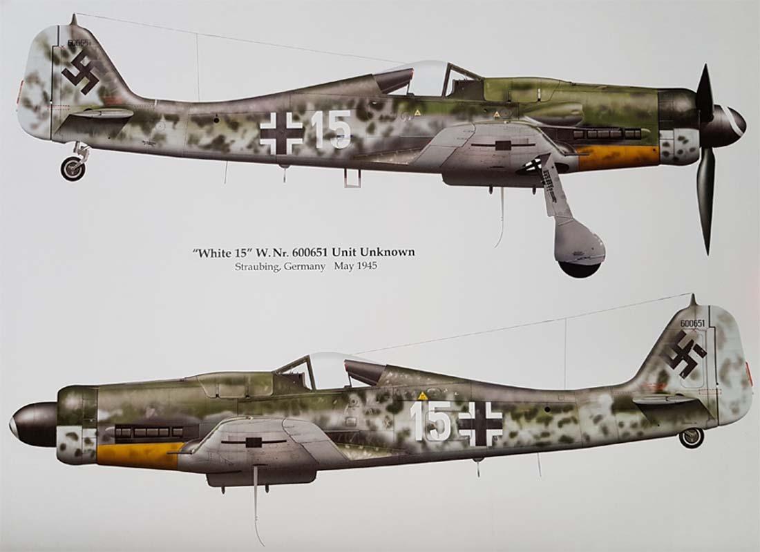 fw-190-d9-2.jpg