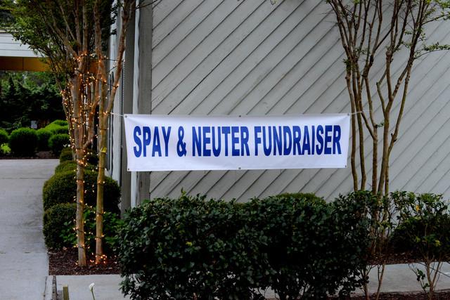 Spay-Neuter-3580.jpg