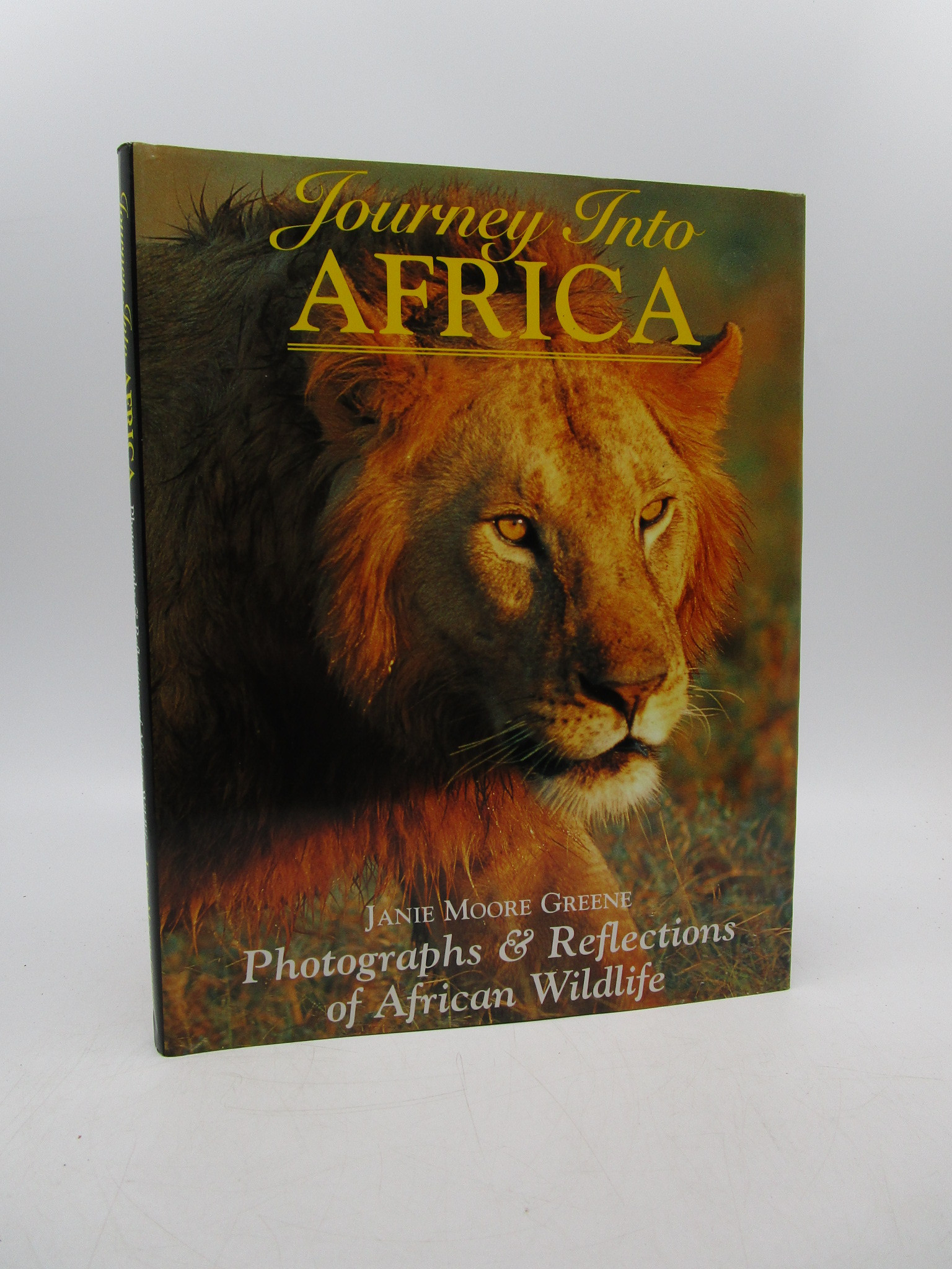 Image for Journey Into Africa