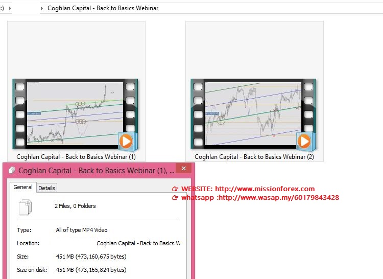 Coghlan Capital - Back to Basics Webinar(SEE 1 MORE Unbelievable BONUS INSIDE!!Jimmy Young - The Banker's Edge)