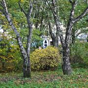 Sortavala-October-2011-109