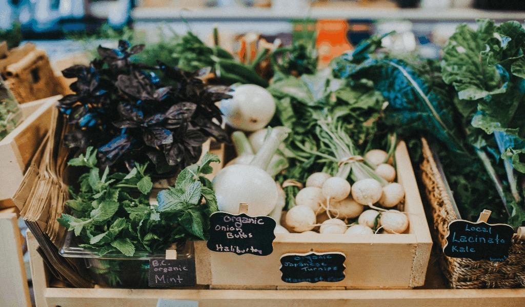 Knowledge Healthy Food