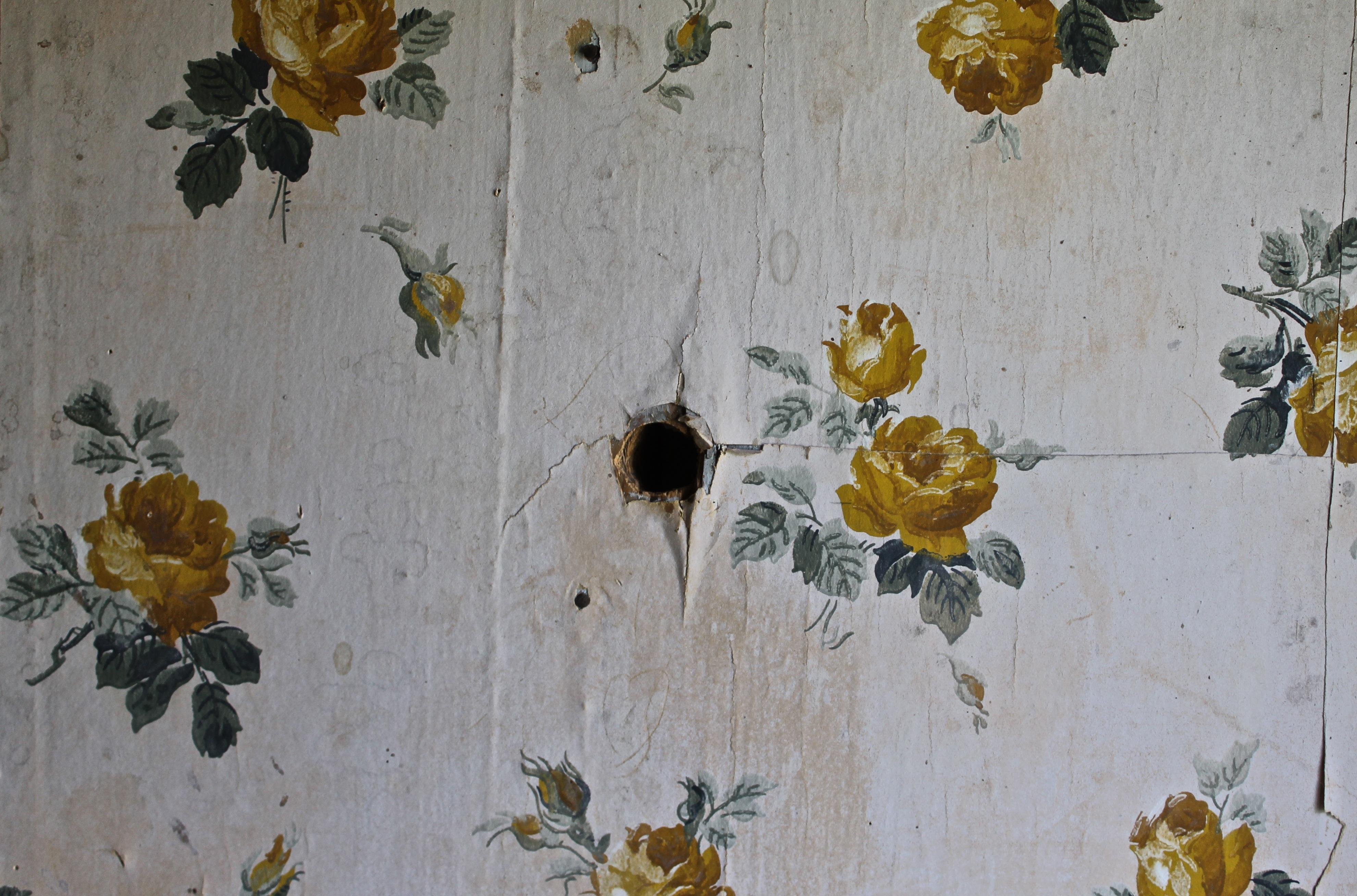 kerusakan Wallpaper Dinding