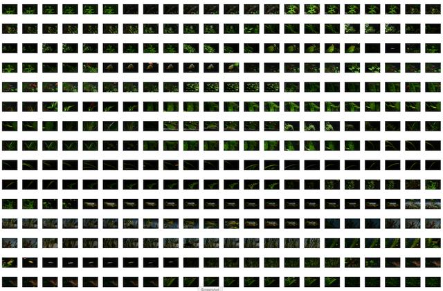 Screen-Shot-2020-01-22-at-2-09-52.png
