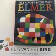 DV-het-grote-Elmerboek