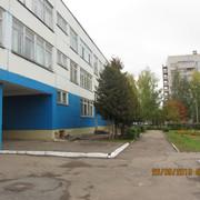 IMG-6705