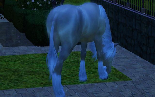Unicorn-is-back