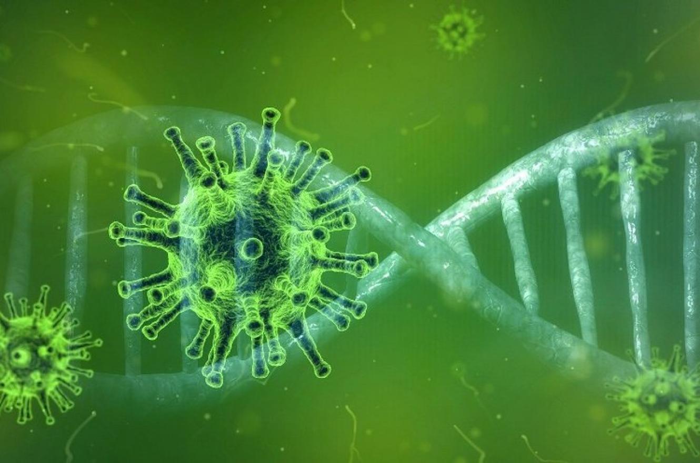 ENTRE RÌOS: Alta cifra de casos de coronavirus en la provincia: reportaron 726 positivos