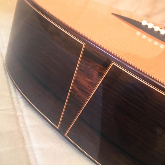 Sergei De Jonge Standard Steel String European / Brazilian Endgraft2