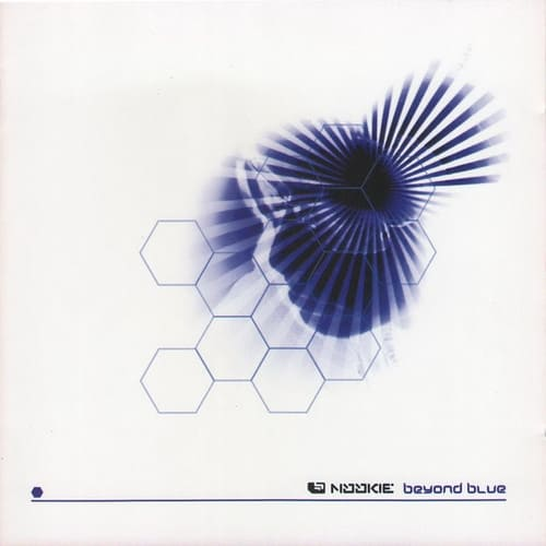 Download Nookie - Beyond Blue mp3